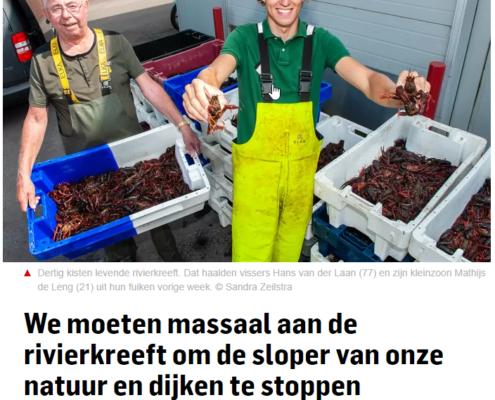Rivierkreeft artikel in het Algemeen Dagblad